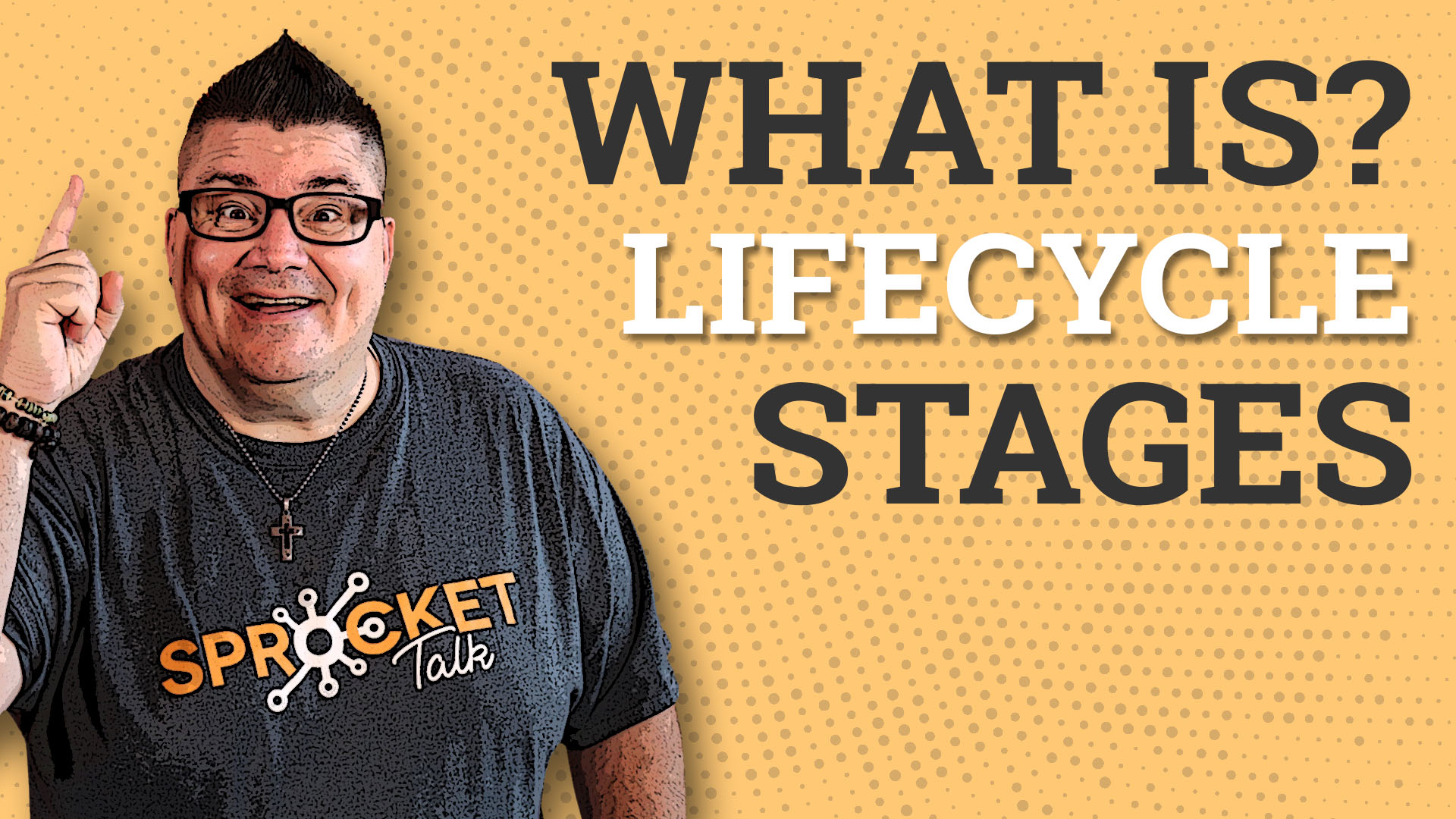 What Is Lifecycle Stage